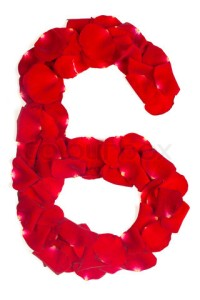 number 6 made from red petals rose on white