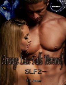 SLFalls 3