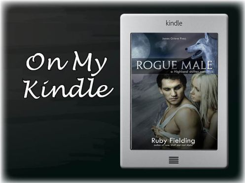 On my Kindle Logo