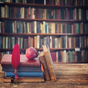 Bookshelf, retro toned