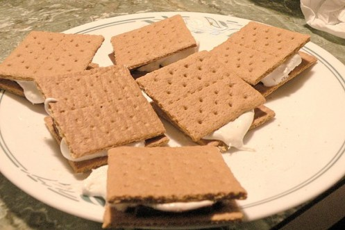 ice-cream-sandwiches-weight-watchers_39561